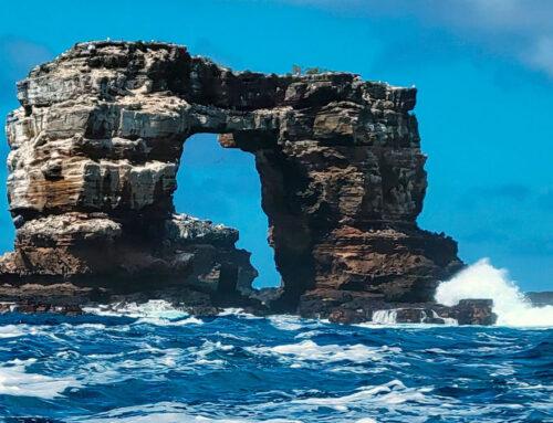 Isole Galapagos – L'Arco di Darwin non c'è più. Amen.